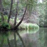 Szlaki wodne Brdy